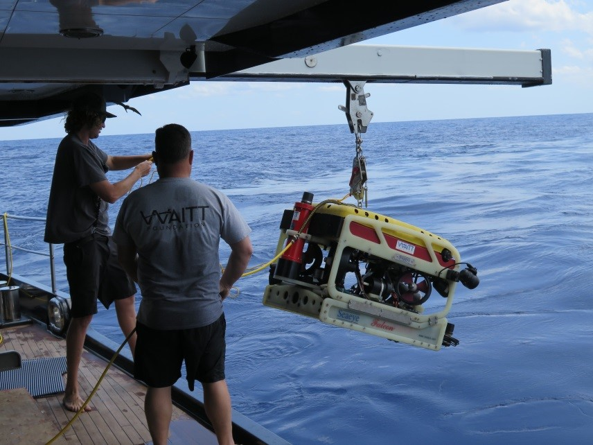 Deploying the Falcon ROV at Pulley Ridge mesophotic reef,